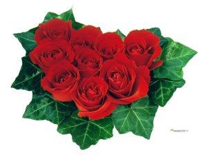 Sfondi amore fiori