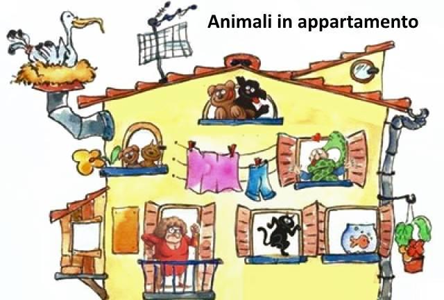 animali in appartamento