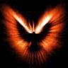 immagine di colomba in volo