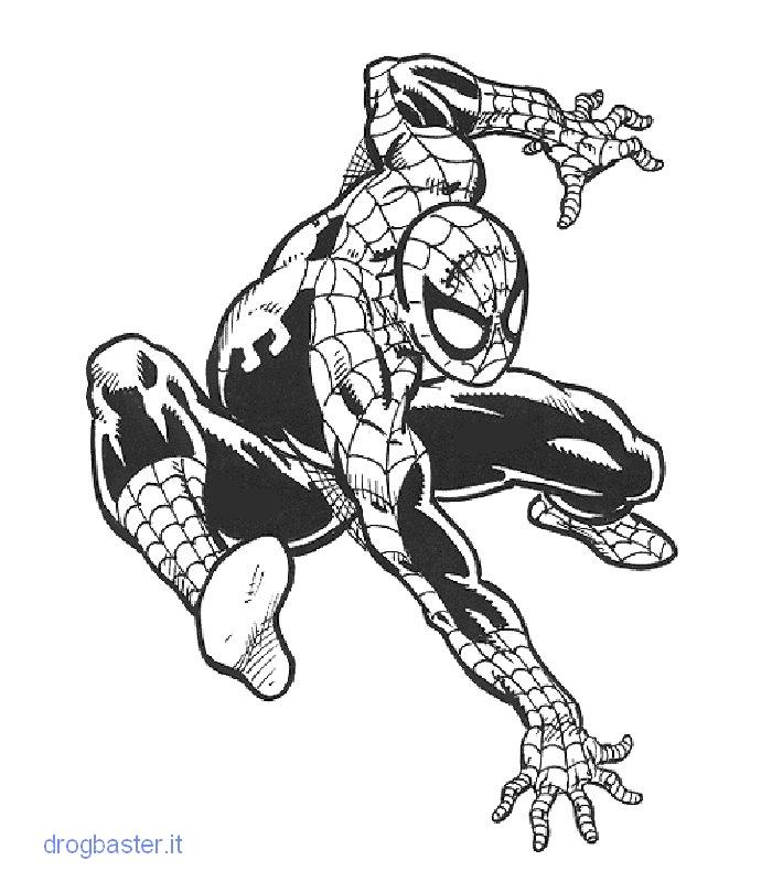 Bellissimi disegni da colorare immagine da stampare for Spiderman da colorare pdf