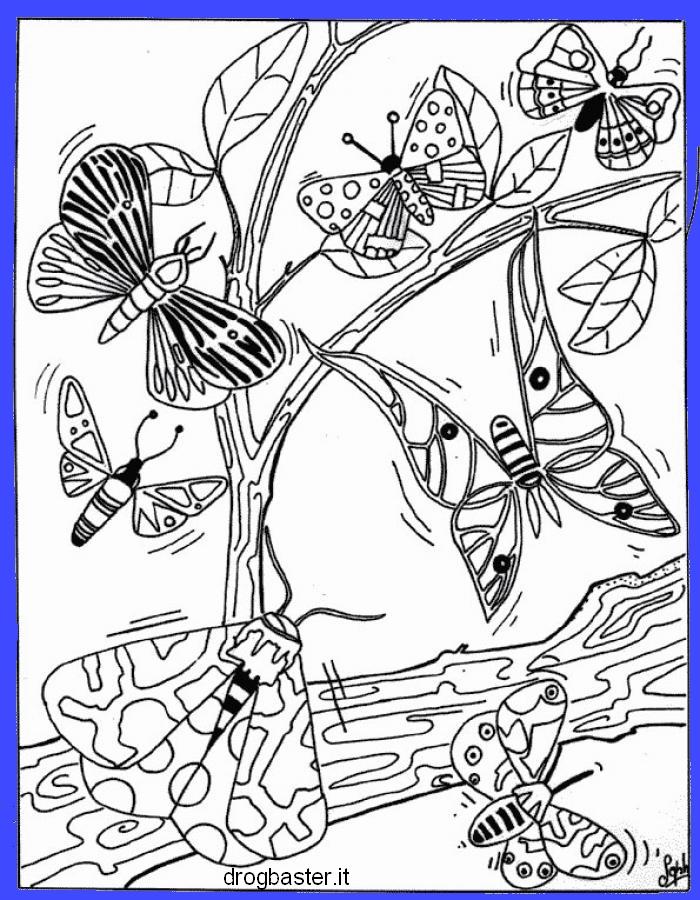 disegni da colorare fiori farfalle