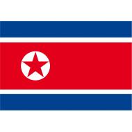 adottata nel 1948 alla nascita della Repubblica Popolare di Corea
