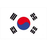 Vessillo nazionale dal 1950 derivata da una bandiera del 19° secolo