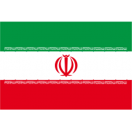 emblema centrale fu aggiunto nel 1979 e rappresenta simboli islamici