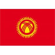 adottata nel 1992 al momento della separazione dall'Unione Sovietica
