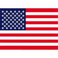 Risultati immagini per icona bandiera usa