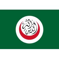 Organizzazione della cooperazione islamica