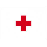 Croce Rossa Internazionale è un'organizzazione umanitaria non governativa fondata nel 1863