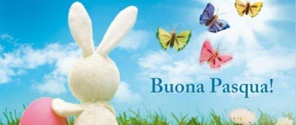 copertina facebook con farfalle, fiori e coniglio di pasqua