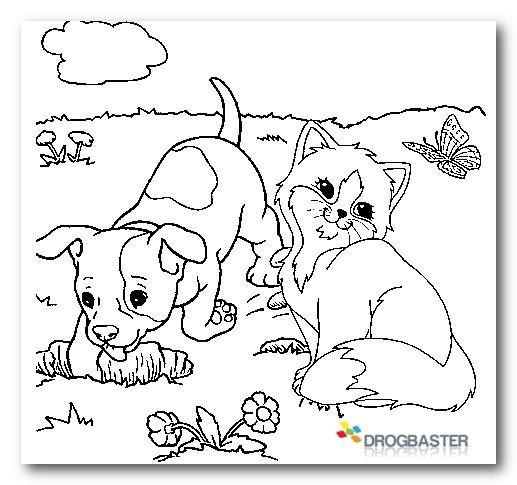 Disegni Da Colorare E Stampare Di Gatti E Cani.Disegni Da Colorare E Stampare Di Cani E Gatti