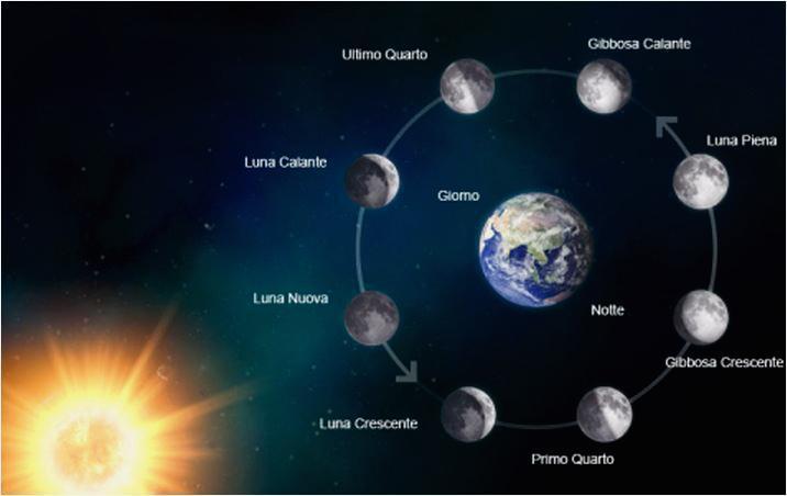 Animazione e simulazione Fasi Lunari