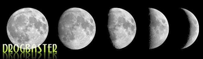 Animazione e simulazione 3d delle fasi lunari
