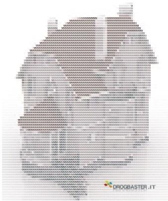immagine in testo ASCII Art