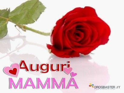 Rosa rossa con la scritta Auguri Mamma