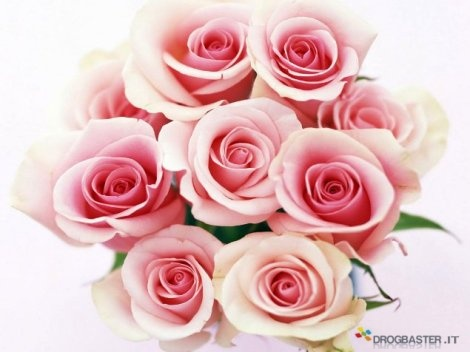 Mazzo di Rose per amore di mamma