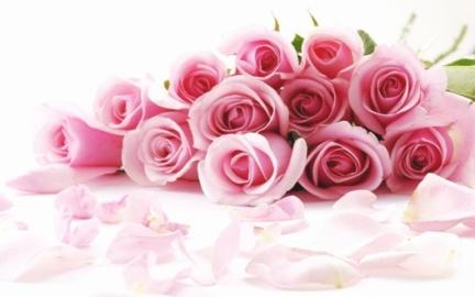 Rose colorate da regalare per il giorno della mamma
