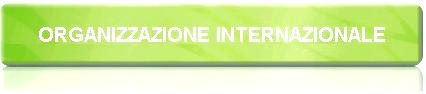 Scritta Organizzazioni Internazionali