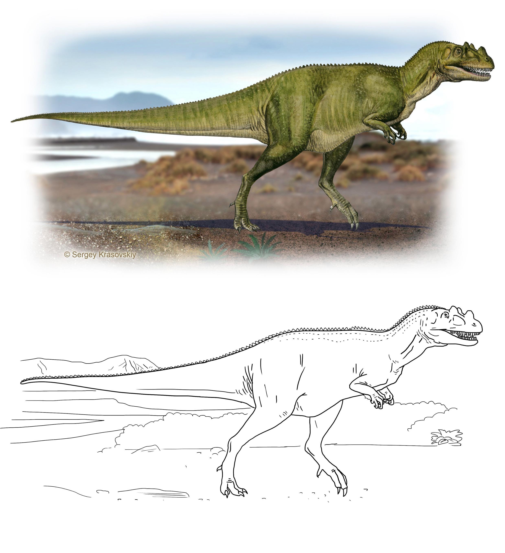 I dinosauri da stampare e colorare completo di scheda - Immagini dei denti da colorare ...