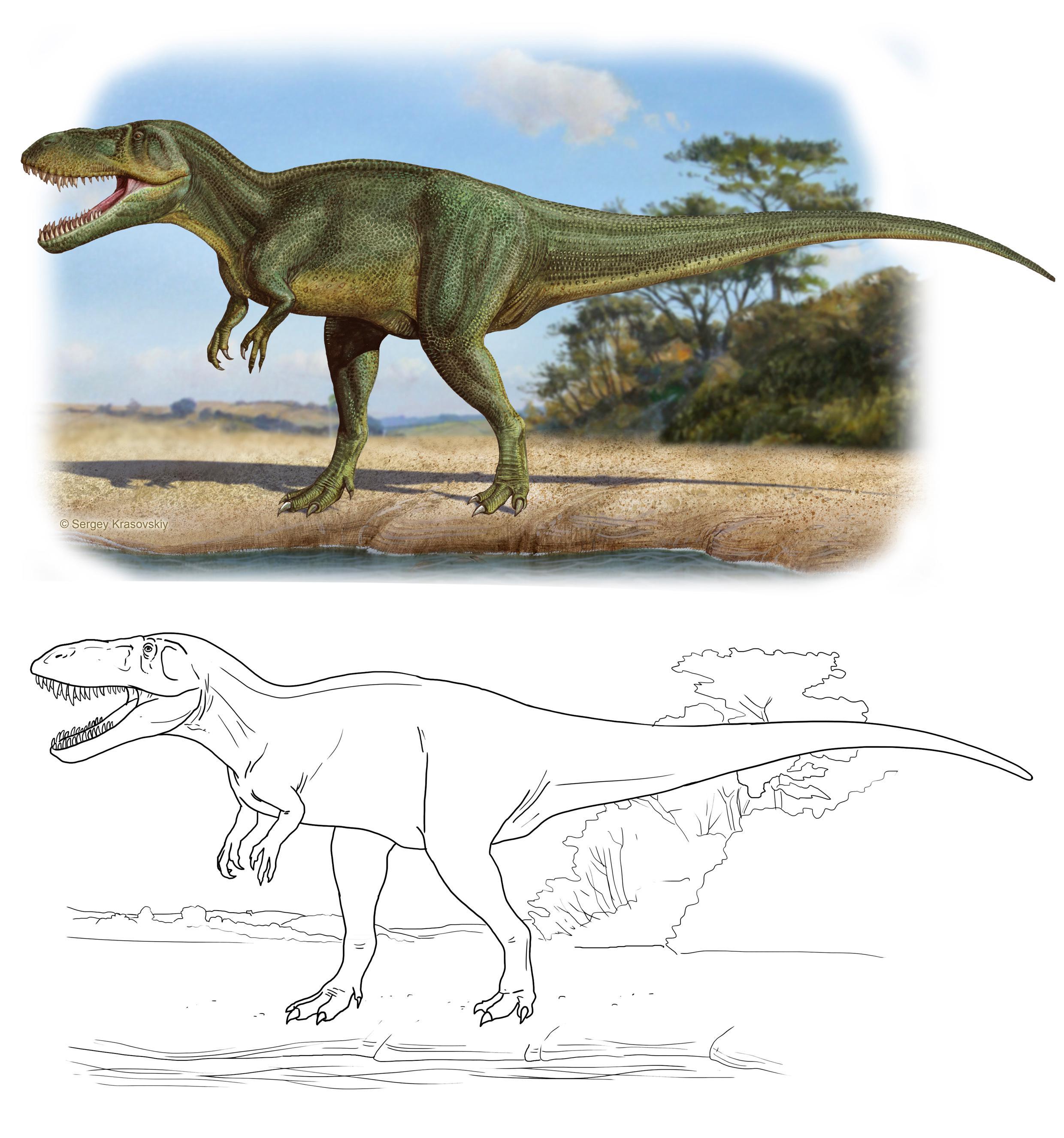 I Dinosauri Da Stampare E Colorare Completo Di Scheda