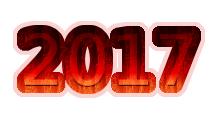 Scritta particolare anno 2017