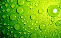 goccie d'acqua sfondo verde