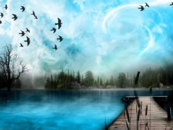 uccelli sorvolano la palude