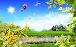 mongolfiere in altro su campo con lago