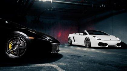 Due Lamborghini Gallardo di color nero e bianco