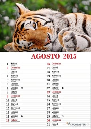 calendario del mese di agosto 2015