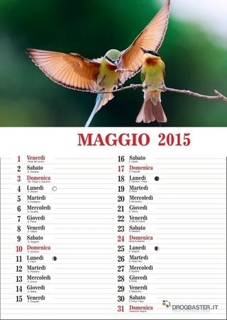 calendario del mese di maggio 2015