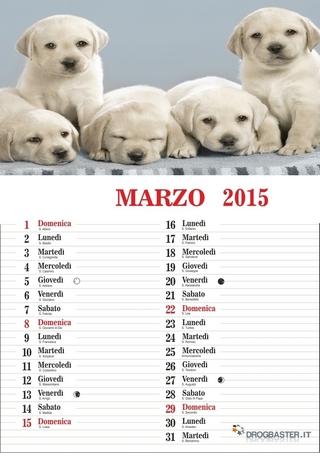calendario del mese di marzo 2015