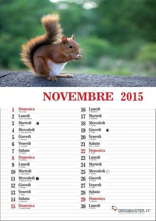 calendario del mese di novembre 2015