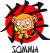 segno della Scimmia