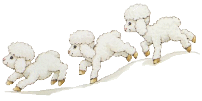 pecorelle auguri