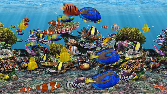 Screensaver acquario
