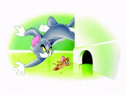 Tom che insegue Jerry per casa