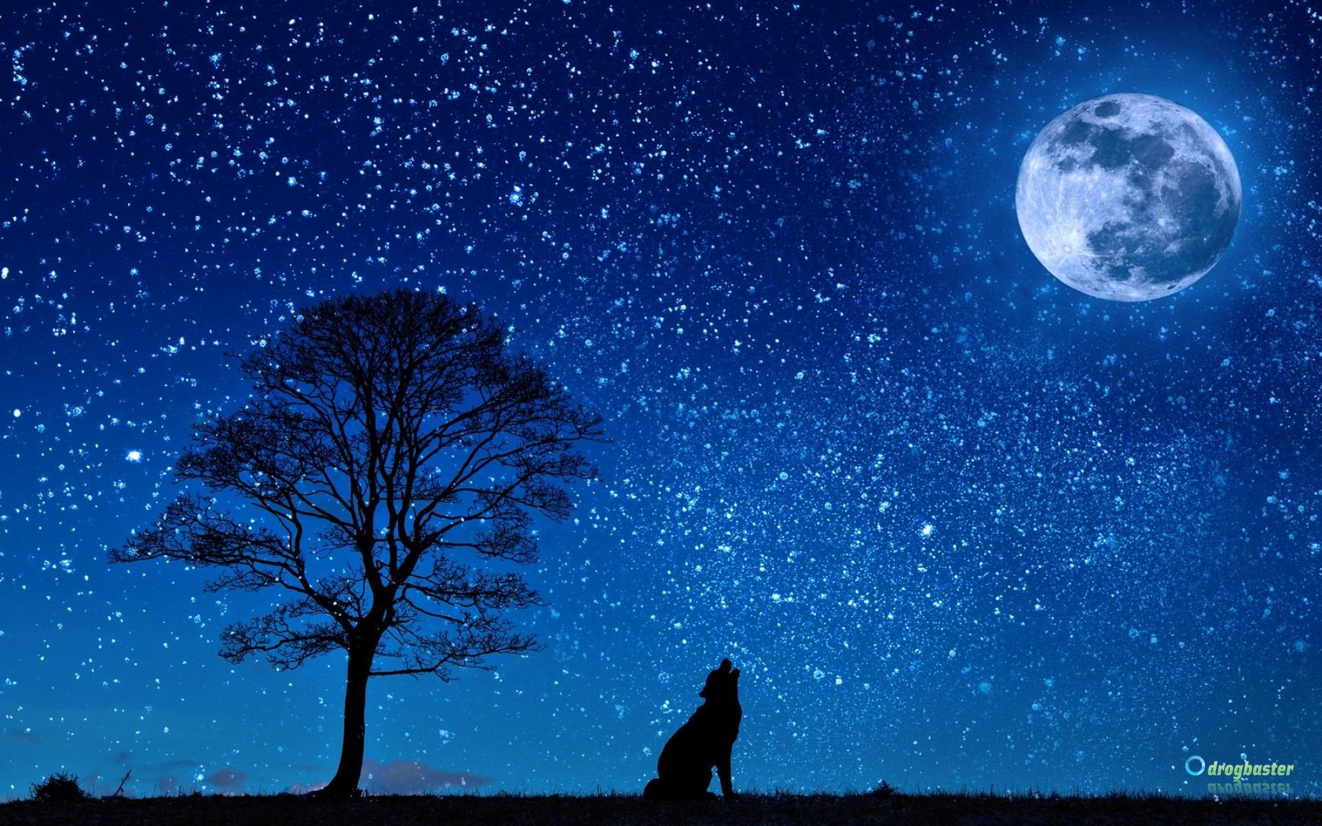 Sfondi Di Paesaggi Notturni Città Di Notte