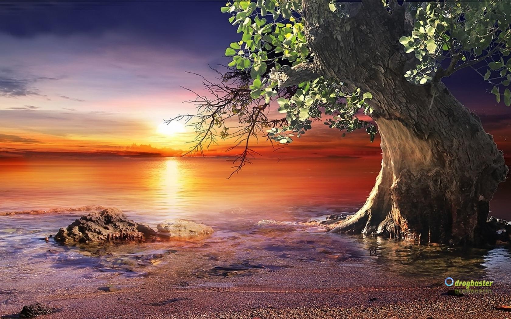 Sfondilandia immagini e wallpaper natura paesaggi e animali for Foto paesaggi gratis