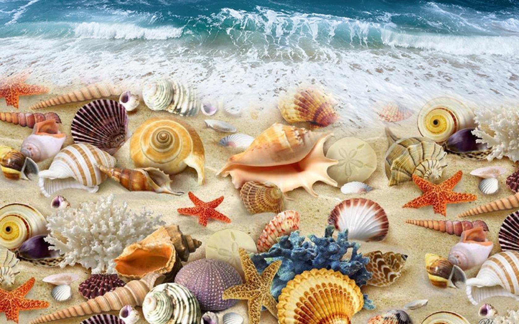 Sfondilandia immagini e wallpaper natura paesaggi e animali for Sfondilandia mare