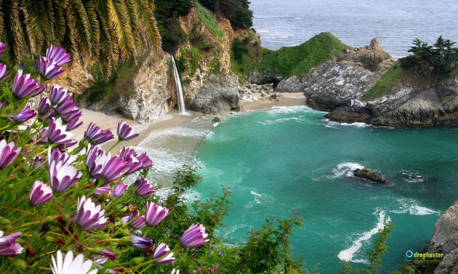 Sfondi e wallpaper gratis immagini natura for Foto per desktop mare
