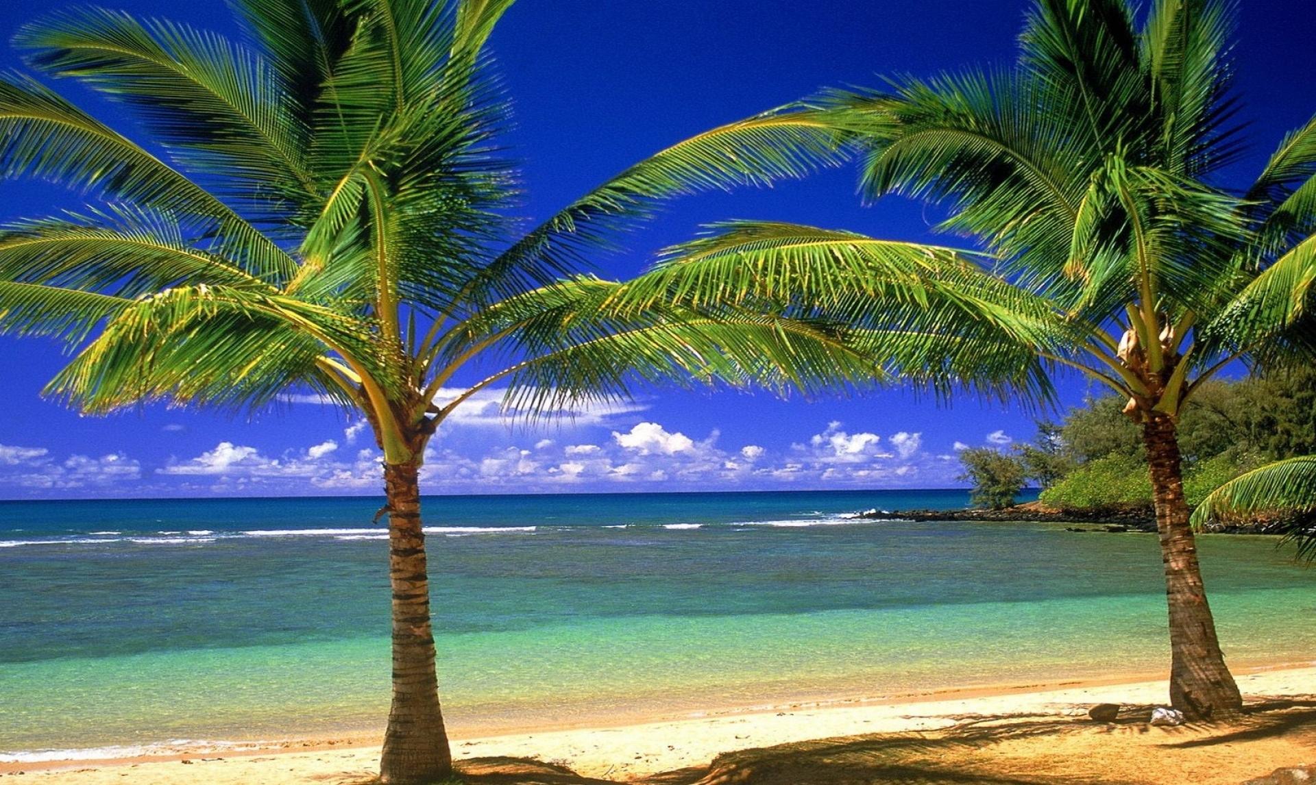 Galleria immagini natura con sfondi di panorami meravigliosi for Desktop gratis mare