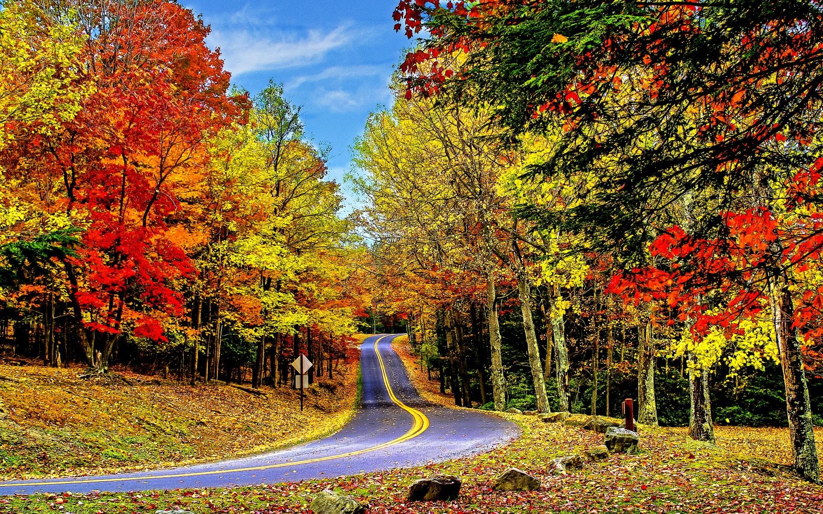 Sfondilandia immagini e wallpaper natura paesaggi e animali for Foto per desktop gratis autunno