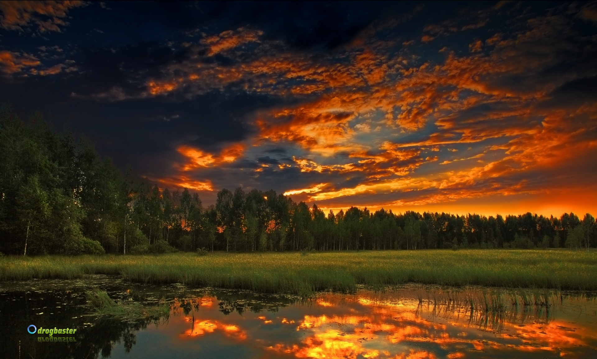 Summer Background Download Free Awesome Wallpapers For: Download Sfondi Desktop Natura
