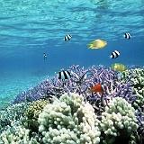 paesaggi da sogno col mare