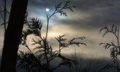 panorama con luna