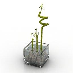 Vaso con canne di bambù