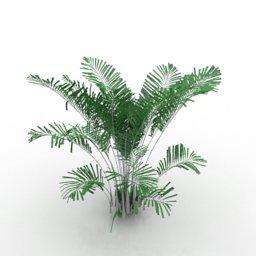 immagini 3d pianta2