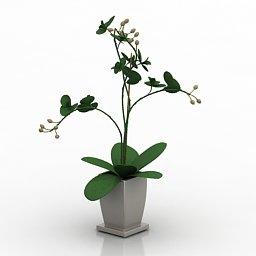 vaso fiori 3d