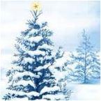 Versione Italiana della  famosa White Christmas