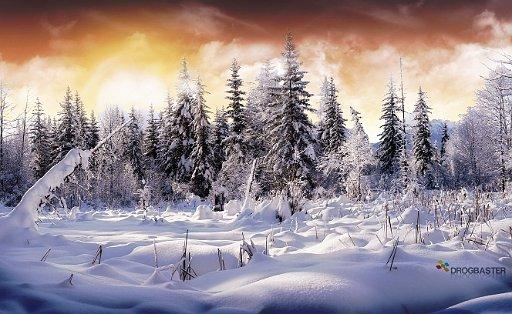 Paesaggi Natalizi Sfondi.Sfondi E Wallpaper Natalizi Per Un Felice Natale